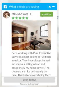 website review widget